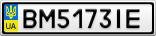 Номерной знак - BM5173IE
