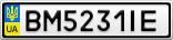 Номерной знак - BM5231IE