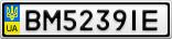 Номерной знак - BM5239IE
