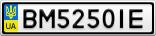 Номерной знак - BM5250IE