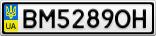 Номерной знак - BM5289OH