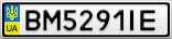 Номерной знак - BM5291IE