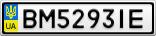 Номерной знак - BM5293IE