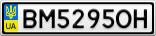 Номерной знак - BM5295OH