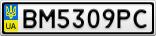 Номерной знак - BM5309PC