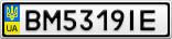 Номерной знак - BM5319IE