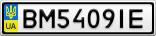 Номерной знак - BM5409IE