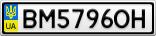 Номерной знак - BM5796OH
