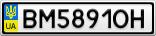Номерной знак - BM5891OH