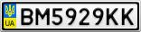 Номерной знак - BM5929KK