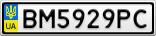 Номерной знак - BM5929PC
