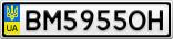 Номерной знак - BM5955OH