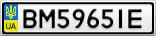 Номерной знак - BM5965IE