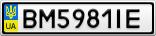 Номерной знак - BM5981IE