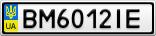 Номерной знак - BM6012IE