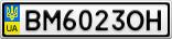 Номерной знак - BM6023OH