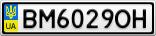 Номерной знак - BM6029OH