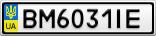 Номерной знак - BM6031IE