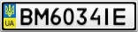 Номерной знак - BM6034IE
