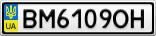 Номерной знак - BM6109OH