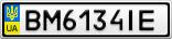 Номерной знак - BM6134IE