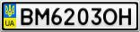 Номерной знак - BM6203OH