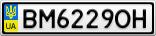 Номерной знак - BM6229OH