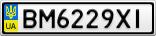 Номерной знак - BM6229XI