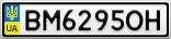 Номерной знак - BM6295OH