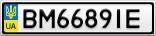 Номерной знак - BM6689IE