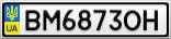 Номерной знак - BM6873OH
