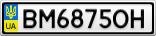 Номерной знак - BM6875OH
