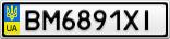 Номерной знак - BM6891XI