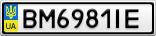 Номерной знак - BM6981IE