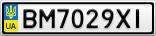 Номерной знак - BM7029XI