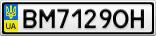 Номерной знак - BM7129OH