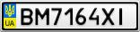 Номерной знак - BM7164XI