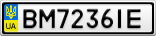Номерной знак - BM7236IE