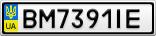 Номерной знак - BM7391IE
