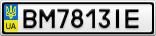Номерной знак - BM7813IE