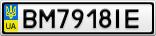 Номерной знак - BM7918IE