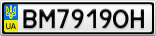 Номерной знак - BM7919OH