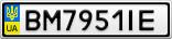 Номерной знак - BM7951IE