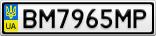 Номерной знак - BM7965MP