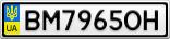 Номерной знак - BM7965OH