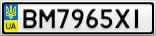 Номерной знак - BM7965XI