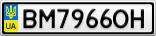Номерной знак - BM7966OH