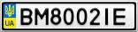 Номерной знак - BM8002IE