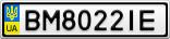 Номерной знак - BM8022IE