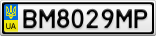 Номерной знак - BM8029MP